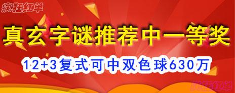 真玄字谜12+3荐中2017注册送白菜头奖
